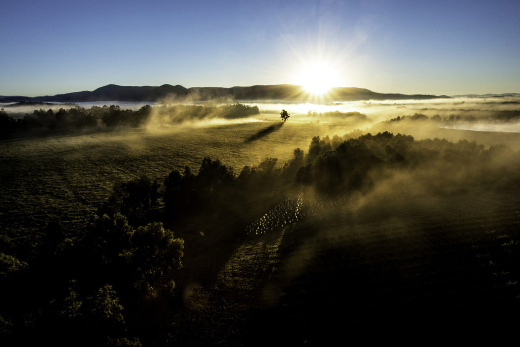 Yarra Valley Photographic Tour